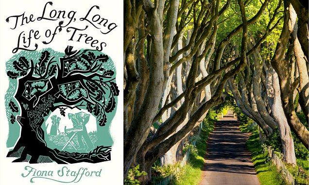 THE LONG, LONG LIFE OF TREES examines the history between humans and trees