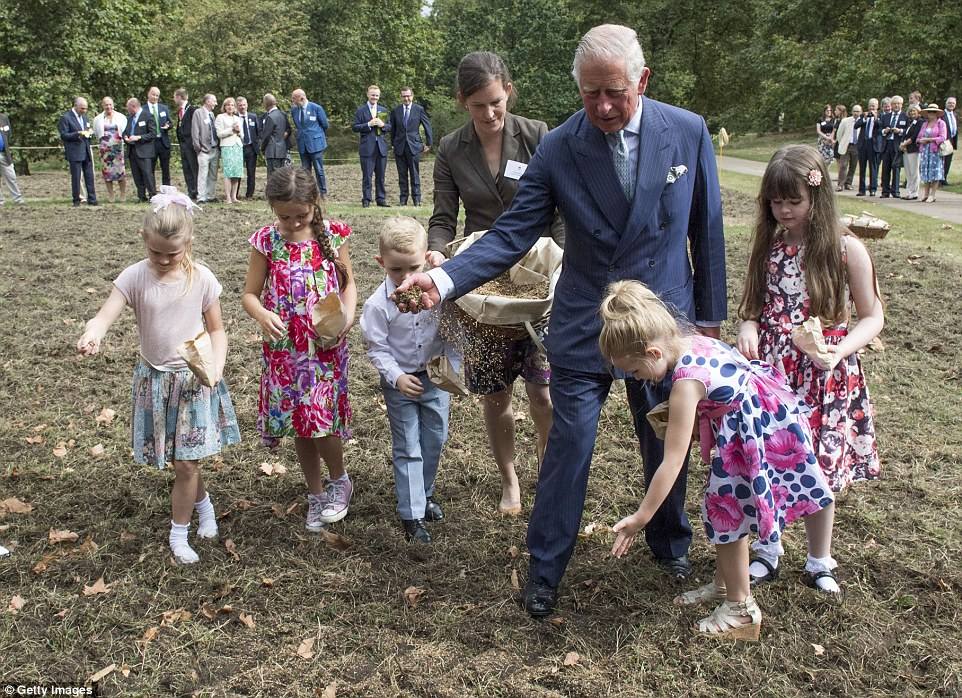Getting involved: Prince Charles sows the the Queen's Meadow with  children as part of his Coronation Meadows project