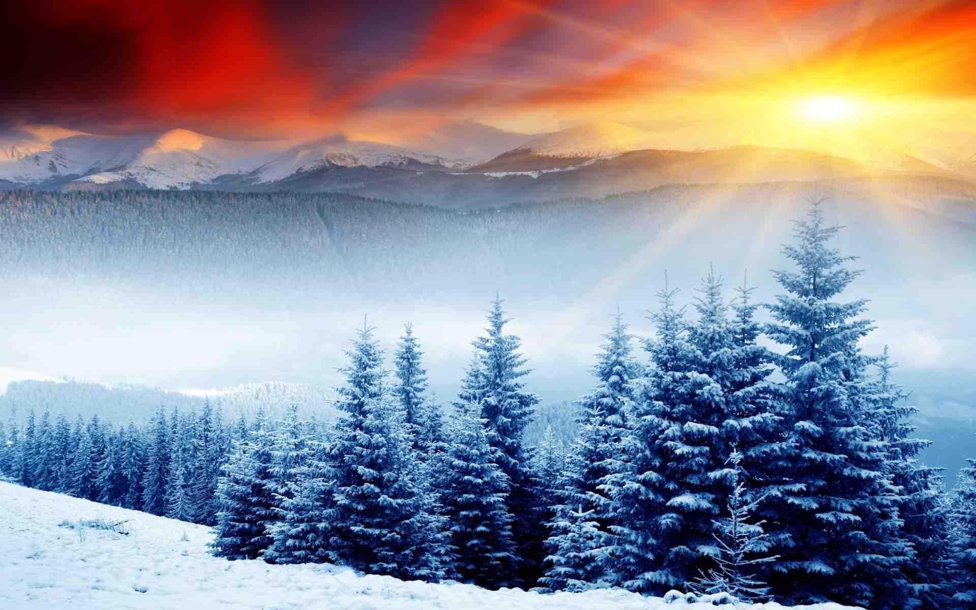 Hình ảnh mùa đông