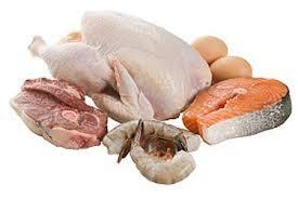 الغداء المتوازن -اللحوم و الأسماك
