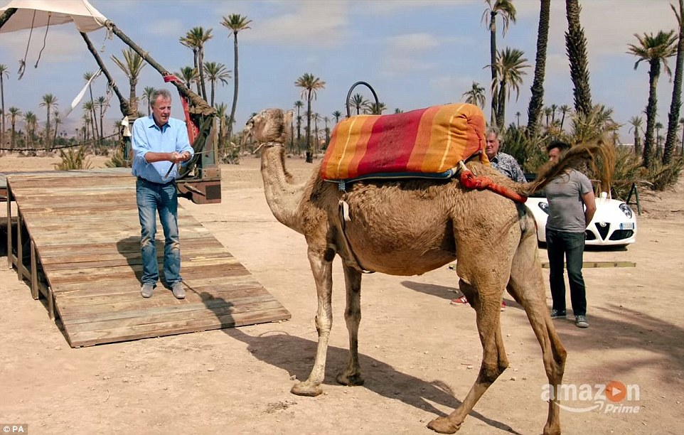 During the video, Clarkson can be seen trying to move a camel (pictured) as May and Hammond watch on