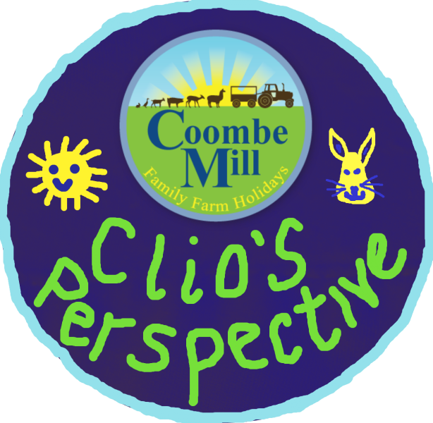 Kids Perspective from Coombe Mill Family Farm Holidays Cornwall