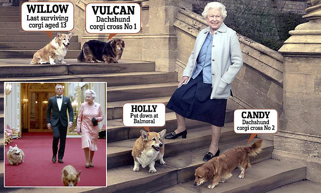 The Queen's pet corgi who starred in 007 Olympic opening ceremony sketch dies aged 13