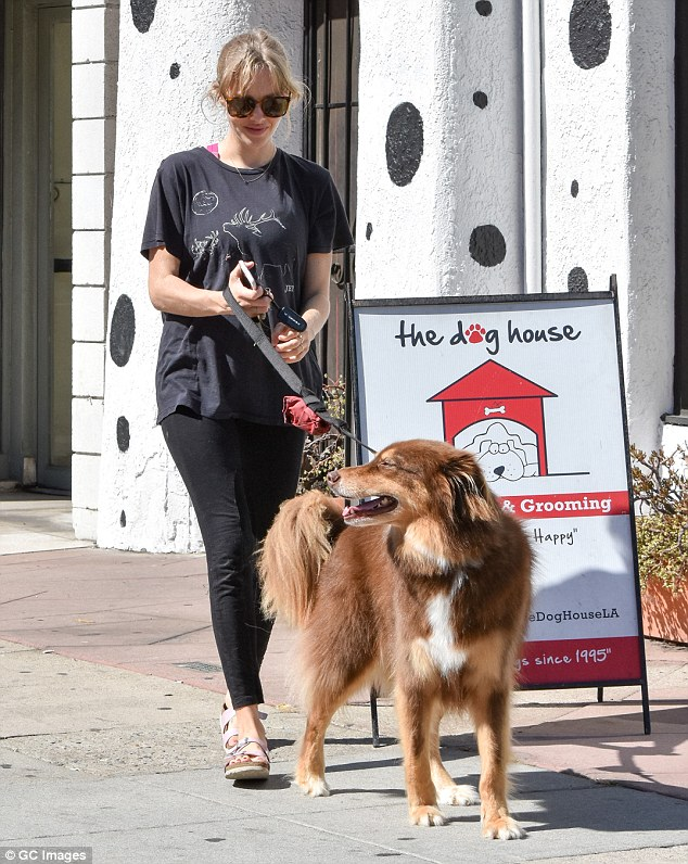 Gal's best friend: Amanda Seyfried, 30, took her beloved seven-year-old Australian shepherd Finn in for some grooming in Los Angeles on Thursday