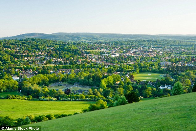 Superb suburb: Dorking from Box Hill, part of Surrey's Mole Valley which moved up 12 spots to seventh place