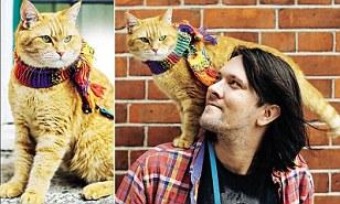 Bob the street cat