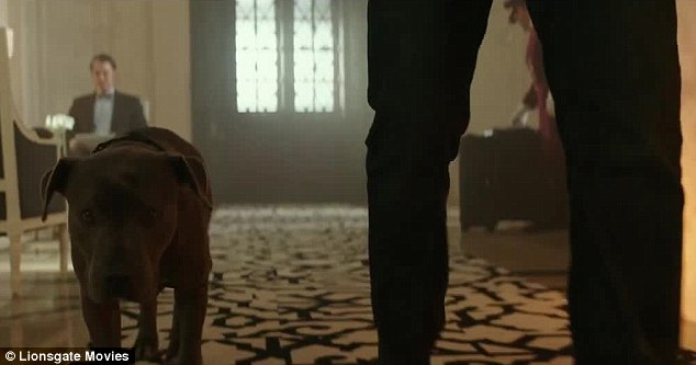 Pals: The dog that Wick procured at the end of the first film also makes an appearance