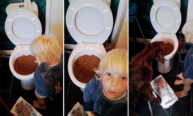 Shocked mother come into the bathroom to find her toddler son her toddler son has dumped