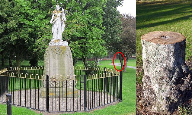 Wallasey residents' fury as police order council to chop down tree in local park