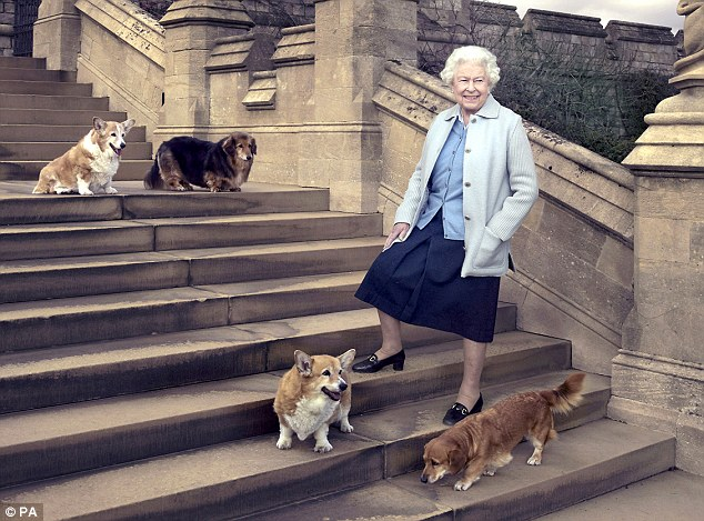 Queen Elizabeth II walking in the private grounds of Windsor Castle with her dogs: clockwise from top left Willow (corgi), Vulcan (dorgie), Candy (dorgie) and Holly (corgi)