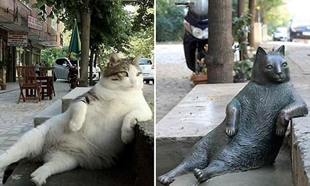 Bronze statue honors famed Istanbul cat Tombili
