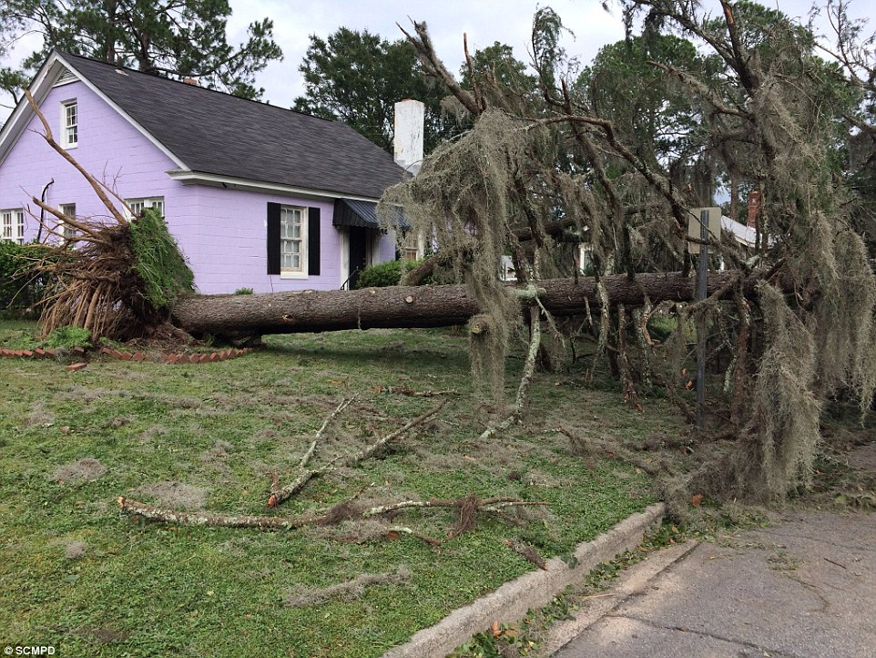 All four deaths reported in Georgia were caused by trees that had been downed during the worst of the storm