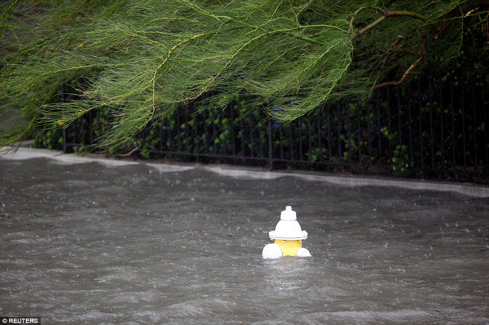 Flood waters almost completely submerge a fire hydrant on East Battery Street as Charleston is hit with heavy rainfall