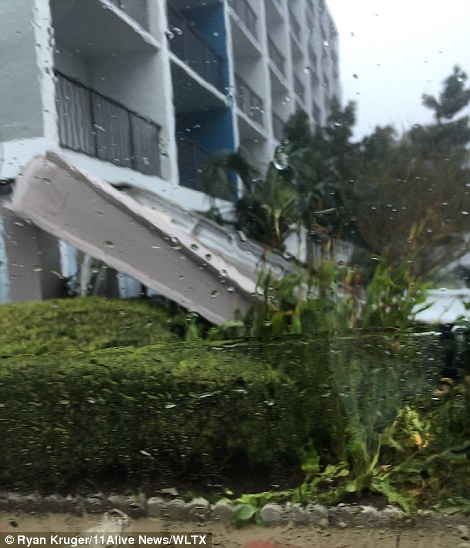 A number of trees were also downed in the city and power outages were reported throughout the area