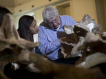 """Rio de Janeiro's Earth Sciences Museum director Diogenes Campos, right, describes a bone of the dinosaur """"Austroposeidon magnificus"""" to a woman at the Earth Sciences Museum, in Rio de Janeiro, Brazil, Thursday, Oct. 6, 2016. Brazilian scientists say they have discovered the fossil of the largest dinosaur ever found in South America's biggest country. He named the 25-meter-long dinosaur """"Austroposeidon magnificus,"""" and said it belonged to the Titanosaur group of herbivores that had large bodies, long necks and tails and relatively small skulls.(AP Photo/Silvia Izquierdo)"""