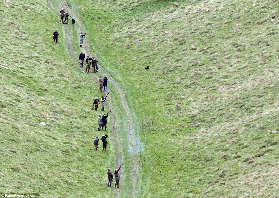 Oh shoot! The large group ventured deep into the estate, where they engaged in a day of eventful pheasant shooting