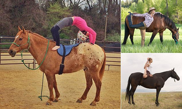 Trend for doing yoga on HORSEBACK is growing in popularity (but not among the