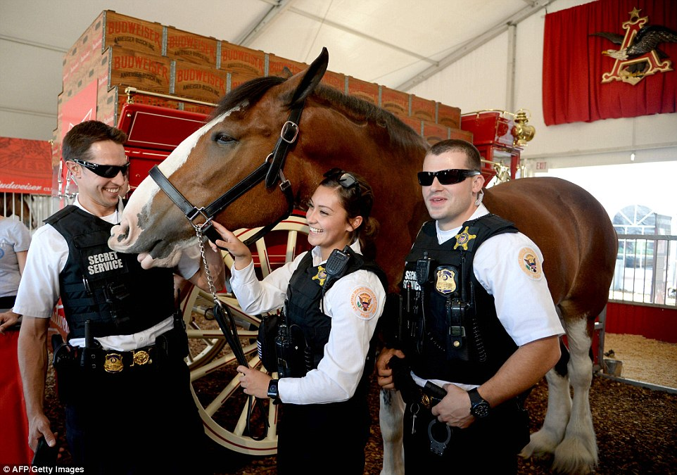 U.S. Secret Service agents pose with a Budweiser Clydesdale on the Campus of Washington University in St. Louis