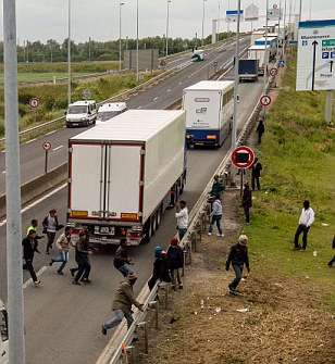 Eritrean migrant killed in Calais after being RUN OVER by British motorist