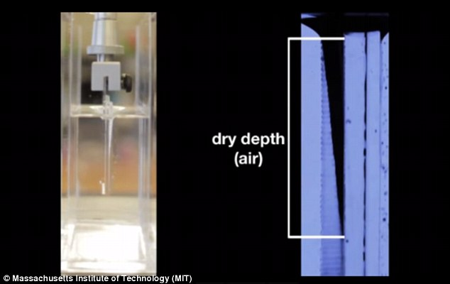 The experiments revealed that surfaces with denser fur that were submerged at higher speeds trapped a thicker layer of air within the hair. The team found that the spacing between hair and the speed at which they enter the water determines how much air is retained