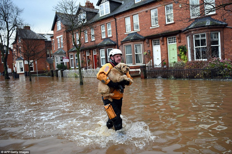 A rescue worker is pictured carrying a dog to safety from a flooded property in Carlisle. Water levels in the city reached about 50cm above the level seen in 2005, which was itself 50cm above the previous record in 1853, the Prime Minister's spokeswoman said earlier today