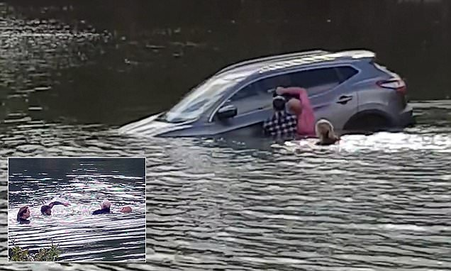 Dramatic moment brave passers-by jump into a lake to save a pensioner and his dog from