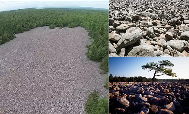 Hickory State Park in Pennsylvania is home to bizarre boulder field