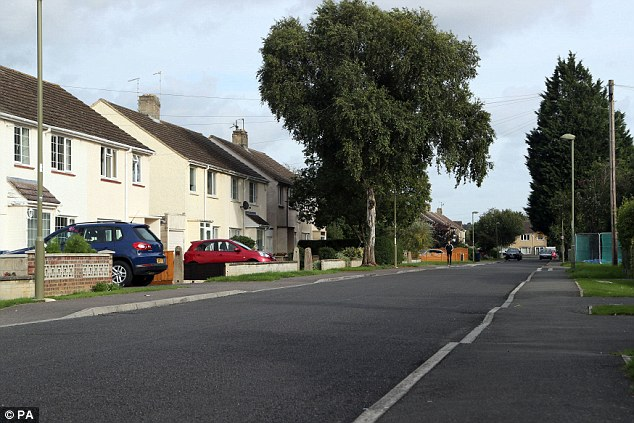 Horror: Following the girl's ordeal, she was found knocking on doors on this road (above) in Marston, and the alarm was raised, officers from Thames Valley Police's major crime unit said