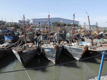 A number of Chinese fishing boats that were caught while operating illegally in Korea's exclusive zone are moored at a port in Incheon, South Korea, Monday, ...