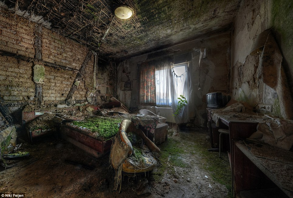 Worse for wear: Time has not been kind to this humble hotel room where everything is covered in moss and debris