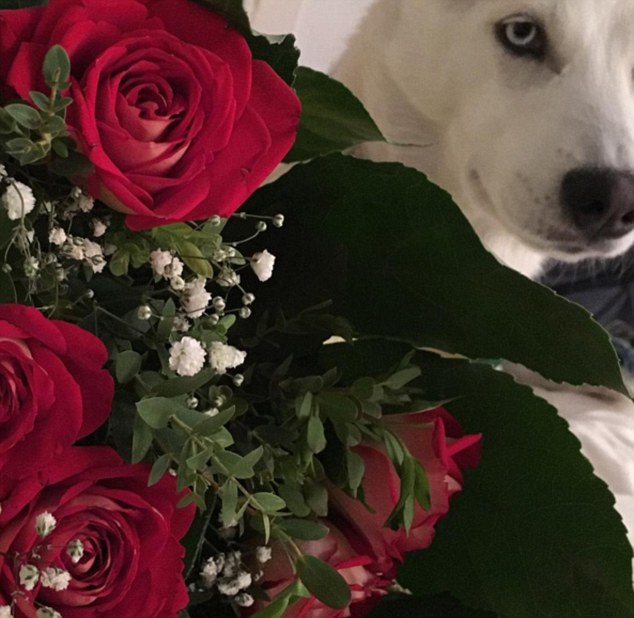 """Hubbys"": Mara sparked rumours that the duo has secretly tied the knot when she posted an image of a bunch of roses alongside the couple's dog Toca on Mother's Day"