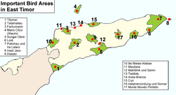 Timor Important Bird Area.png