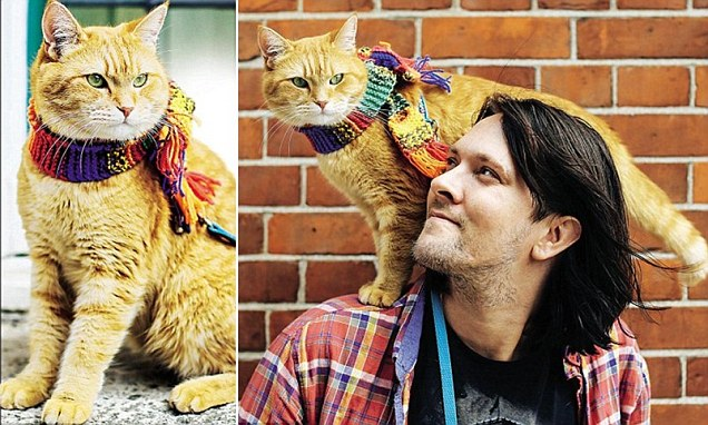 'I got clean for Bob. I took care of him, and he took care of me': How one very smart cat