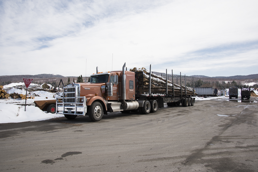 Wholesale Bark Mulch Delivering to New England