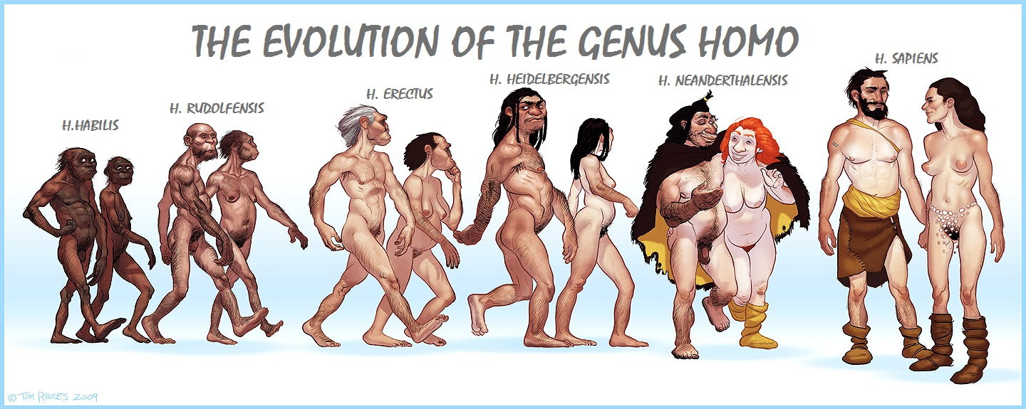 The latest levels of human evolution
