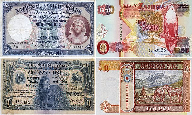 The color of money! From ancient kings to glimmering bird holograms, the most beautiful
