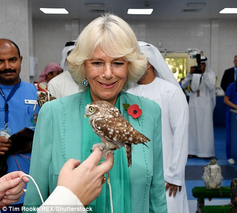The Abu Dhabi Falcon Hospital is the world's largest avian hospital and the leading centre for falcon medicine. Around 9,000 birds are treated at the hospital a year