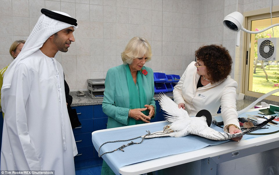 Caring Camilla listened avidly as the team told her all about the bird hospital and how they help to save their lives