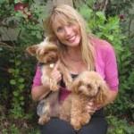 Karen Palmer - Law of Attraction