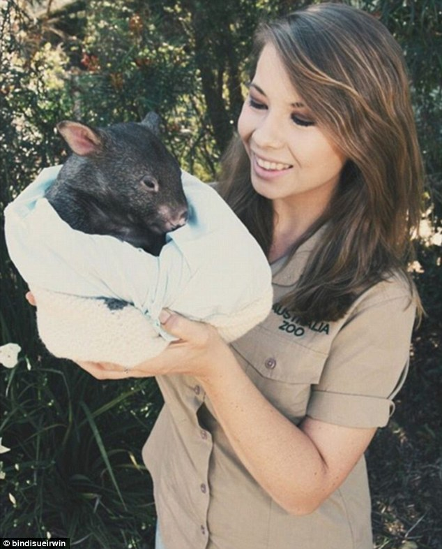 Household name: Bindi, a conservationist from a young age, is also well-known internationally after winning the US version of Dancing With The Stars last year