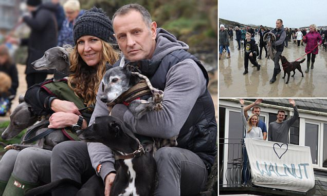 Newquay man takes dog Walnut on final walk and is joined by hundreds