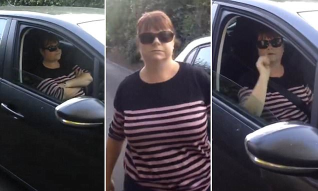 Road rage argument shown after woman refuses to reverse her car to let horseboxes go past