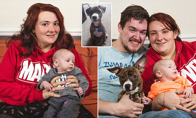 Pregnant mother rushed to hospital after her dog Lola alerted her to having a miscarriage