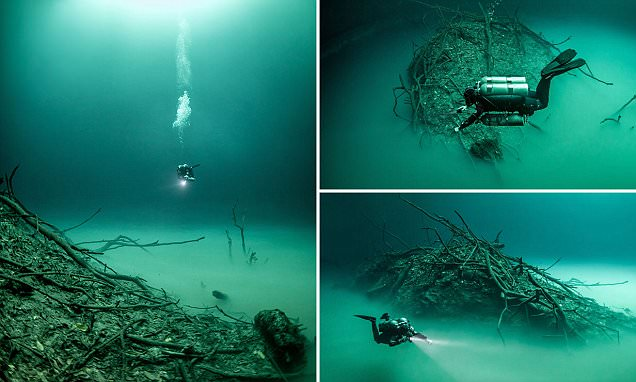 The bizarre underwater 'lake': Haunting images reveal Mexico's peculiar water-filled