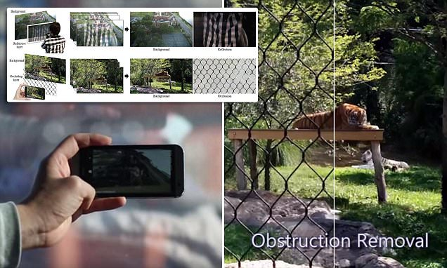 Google could make your holiday snaps better by removing reflections