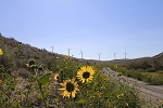 Wind energy project in Oregon thumbnail