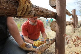 Volunteer builds a fence, thumbnail