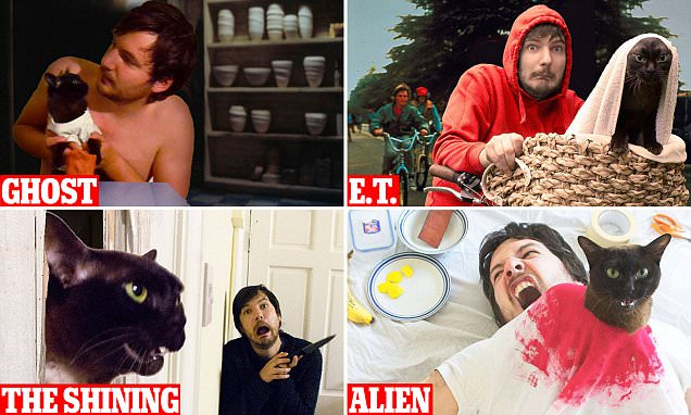 Couple send the web into a frenzy as they use their CATS to re-enact iconic movie scenes