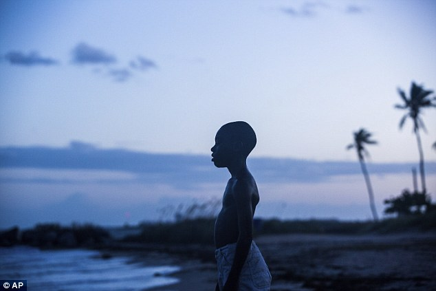 Standing out: The nominations for the Film Independent Spirit Awards were announced on Tuesday. American Honey and Moonlight (pictured)  led the way with six nominations each