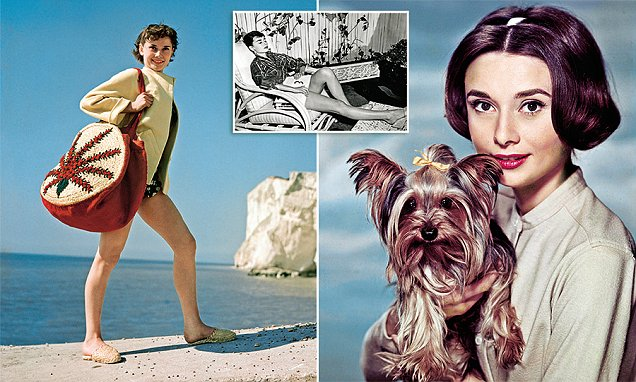 Hollywood had seen nothing like it when Audrey Hepburn first burst on to the scene